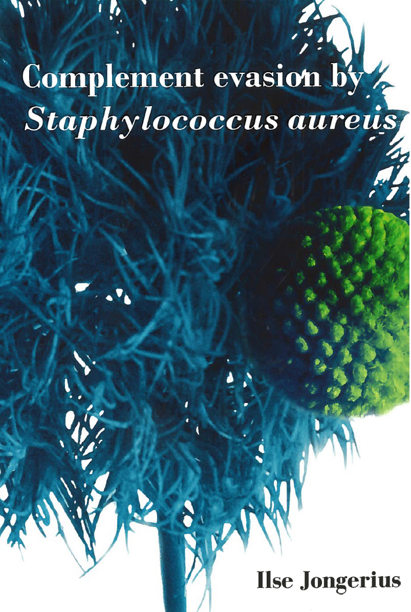 Phd thesis on staphylococcus aureus