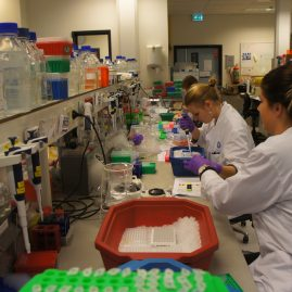 People at work in the lab